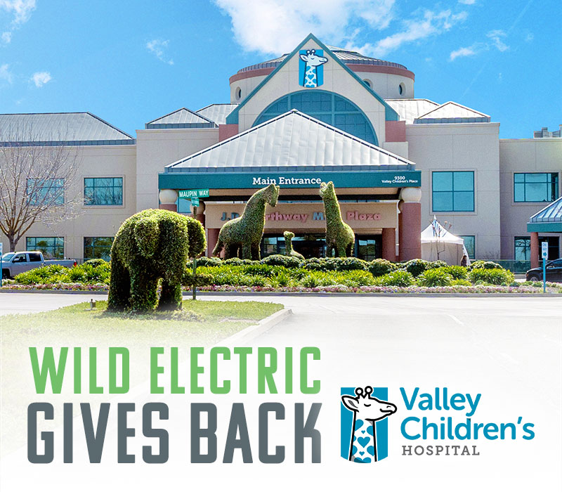 Wild Electric Gives Back