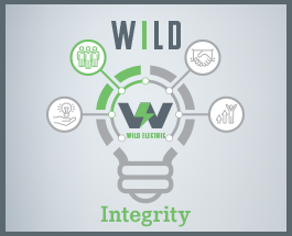 wild Electric - Integrity